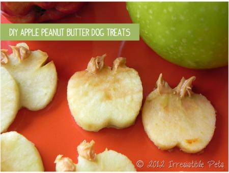 DIY apple peanut butter dog treats from irresistiblepets.net