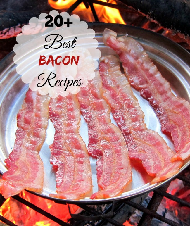 Celebrate bacon day (last Saturday before Labor day) with one of my top 20 Bacon recipes