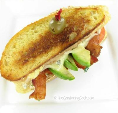 Lasagne blt sandwich