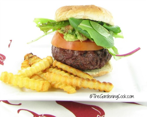 Mex Italian burger from thegardeningcook.com