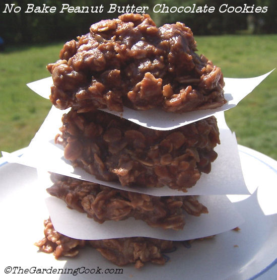 No bake peanut butter and chocolate cookies - from thegardeningcook.com