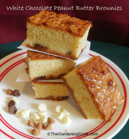 White chocolate peanut butter blondies
