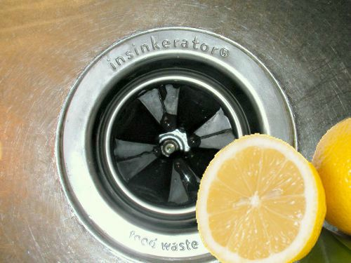 clean a disposal with lemons