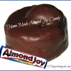 Home Made Almond Joy Candy