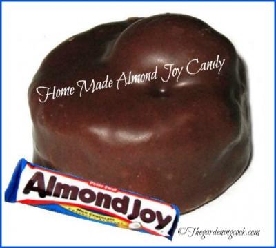 Home Made Almond Joy Candy