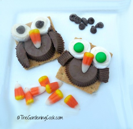 Cute owl DIY project from thegardeningcook.com