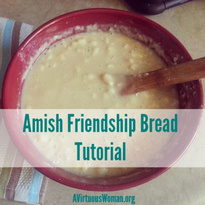 Amish friendship bread from avirtuouswoman.org