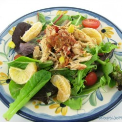 Crock pot chicken salsa salad