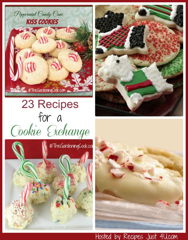 Do you plan to host a cookie exchange this holiday season? Try one of these delicious cookie recipes to make it the star of the exchange.