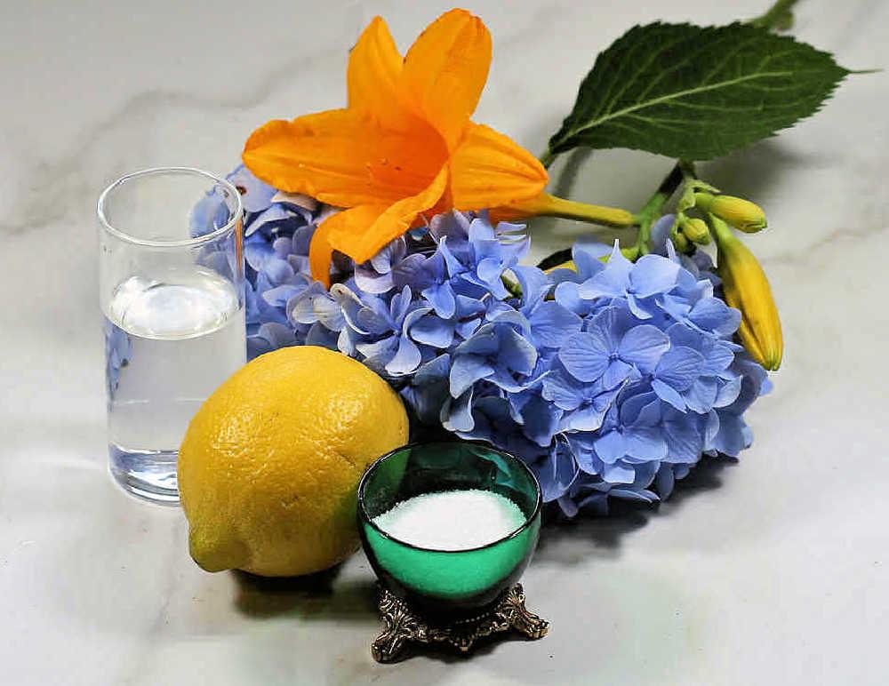 Bleach lemon juice and sugar with cut flowers.