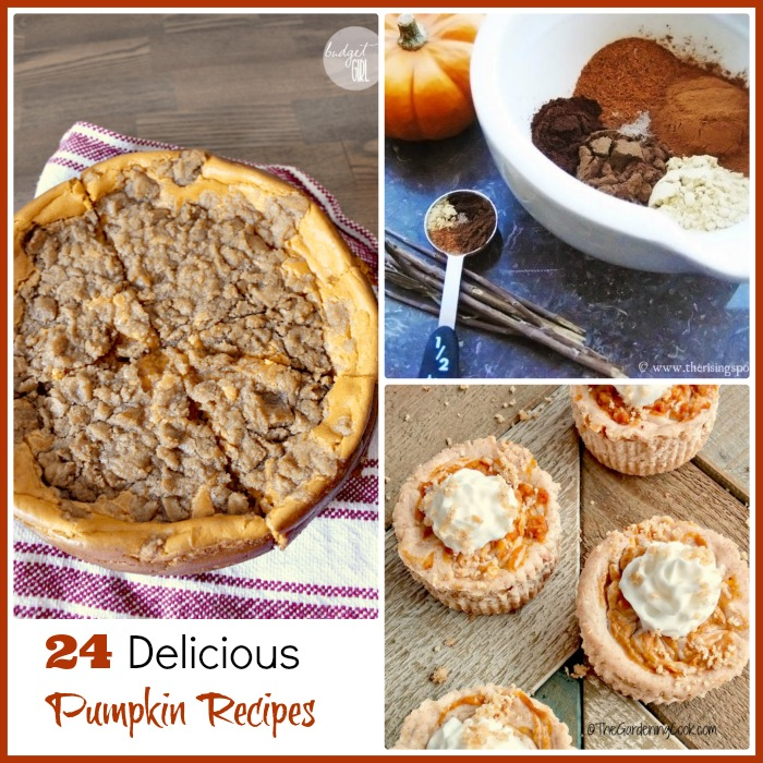 These 24 delicious pumpkin recipes will add lots of special tastes to your holiday table this year. recipesjust4u.com
