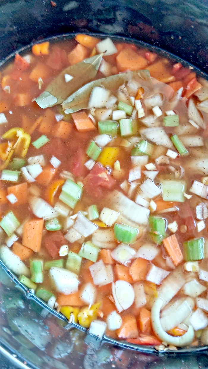 Vegetables in the crock pot for soup