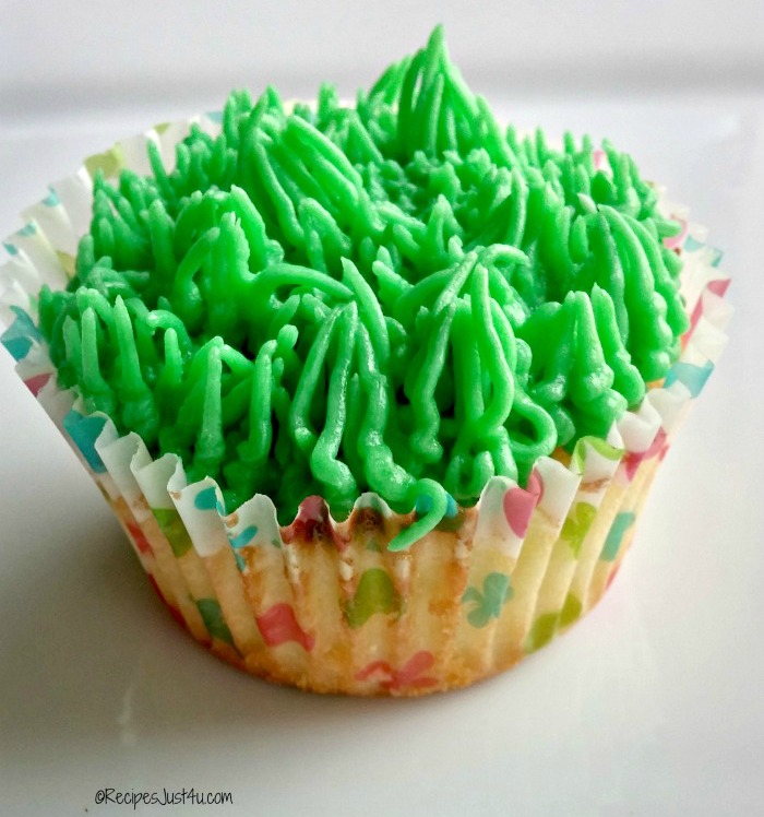 cupcake with grass frosting.
