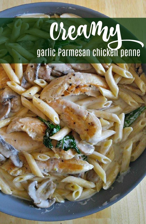 Creamy garlic Parmesan penne pasta recipe