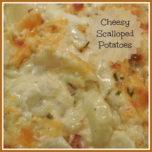 Cheesy Scalloped Potatoes makes the perfect side dish