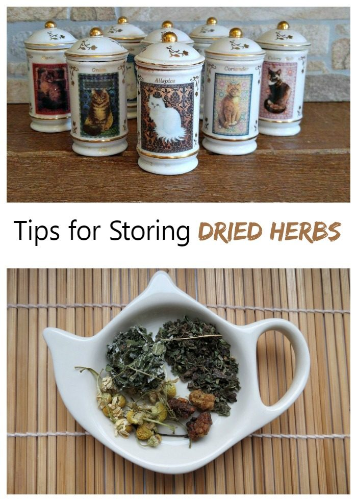 Spice jars and herbs in a tea pot shaped dish with words Tips for Storing Dried Herbs.