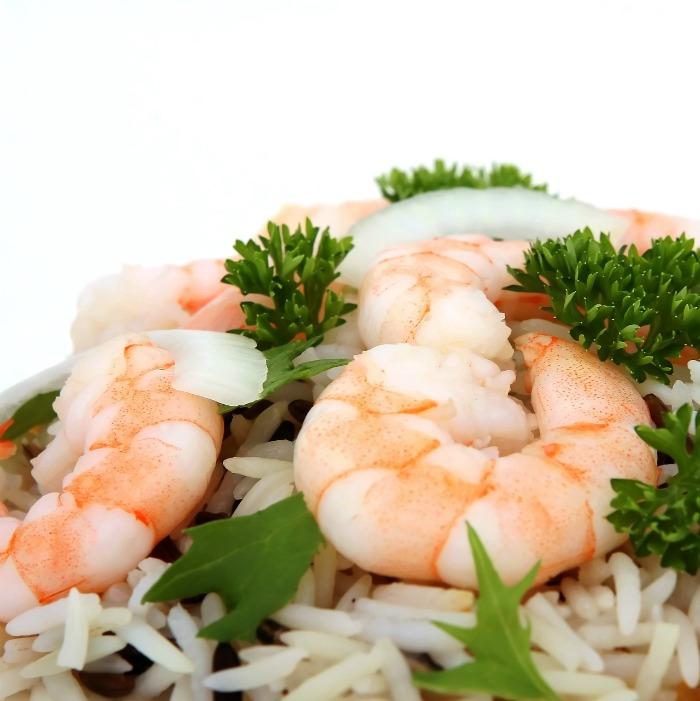 Shrimp recipes Galore