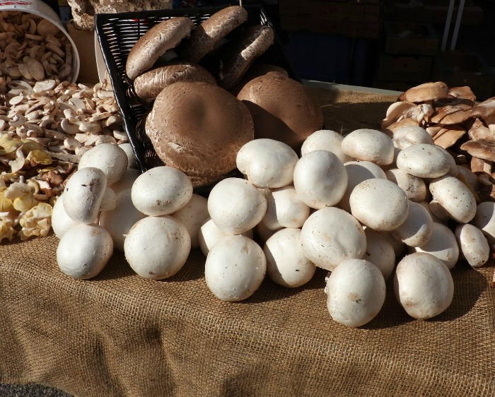 There are so many types of mushrooms that you can use in recipes