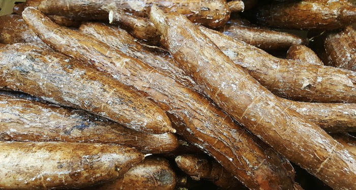 cassava or yuca can be ground to make flour