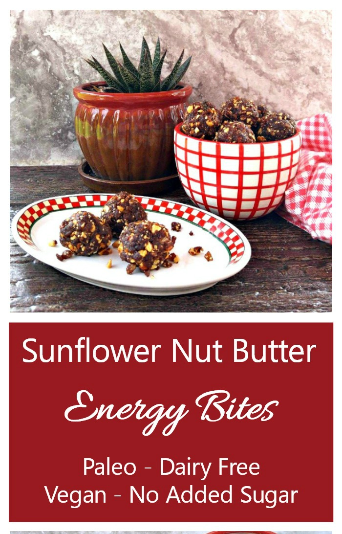 Make these sunflower nut energy bars today. They are gluten free, paleo and vegan.