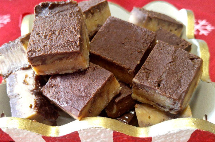 Close up of the peanut butter swirl fudge