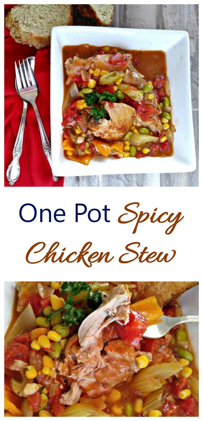 This One pot spicy chicken stew is the ultimate winter comfort food. It is easy to make and has a fabulous taste. #chickenstew #onepotcooking