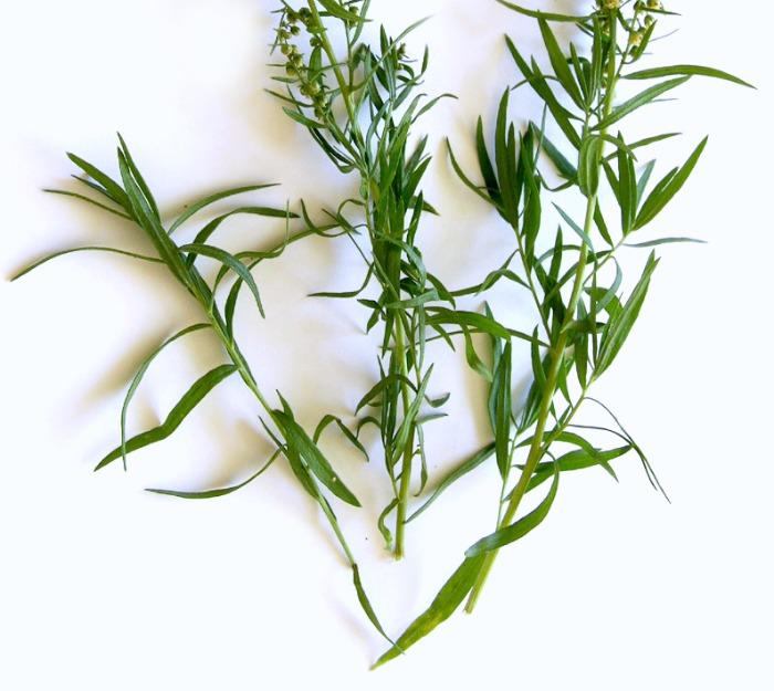 sprigs of tarragon