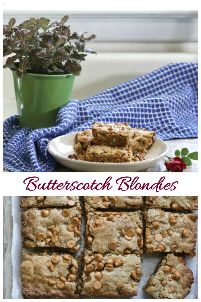 These butterscotch squares have a rich and decadent taste with the texture of a fudge brownie. So yummy and easy to make!