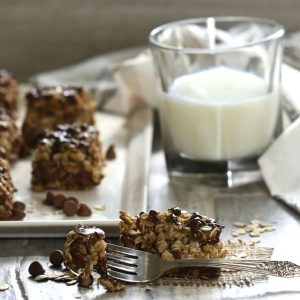 Milk and oatmeal bars