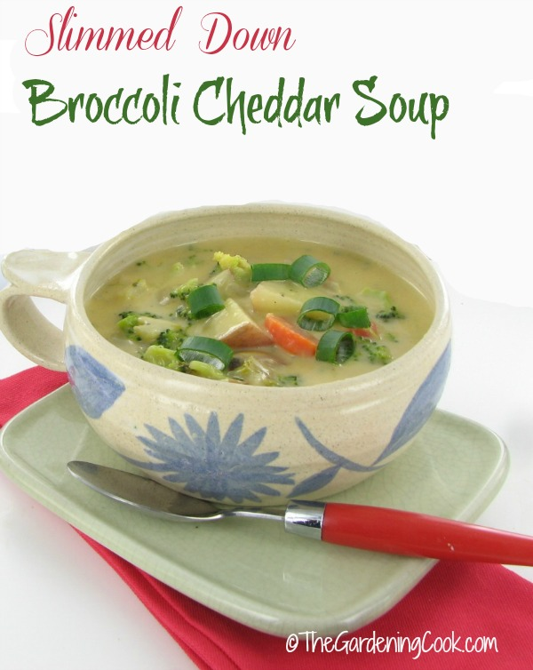 Slimmed Down Broccoli Cheddar Soup