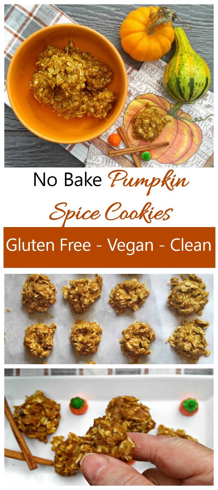 Pumpkin Spice Cookies - No Bake Gluten Free Pumpkin Cookies